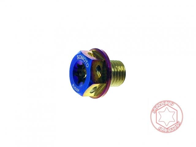 drg齒輪油螺絲/齒輪油注入孔螺絲/白鐵螺絲/機車螺絲